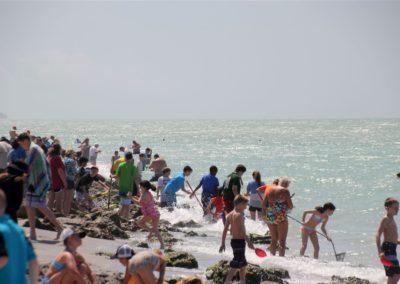 Casperson-beach, Venice